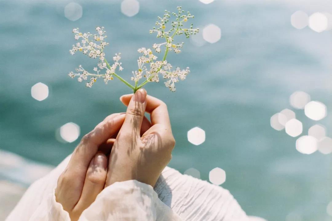 人生六件事:两件不能等,两件不能怕,两件不能选